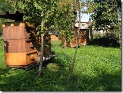 Včely Durec a kluci jkaskadeři 094