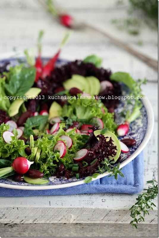 sałata karbowana, rzodkiewka i zioła (11)