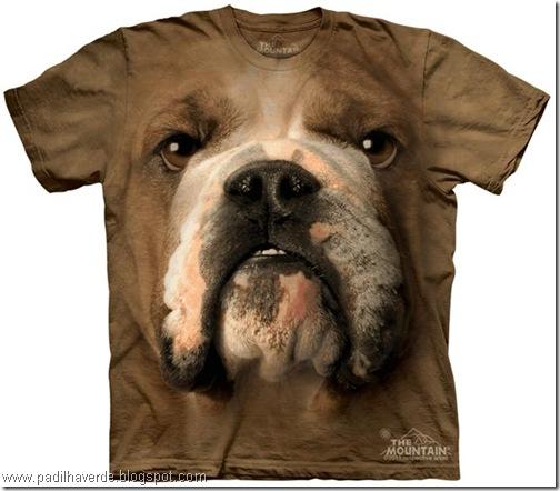 camisetas de Montain-7