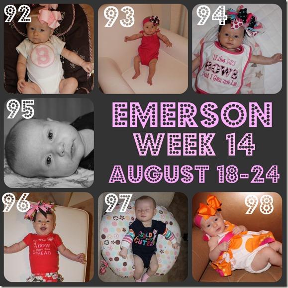 emerson week 14