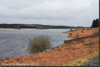 5-Loch-Maberry
