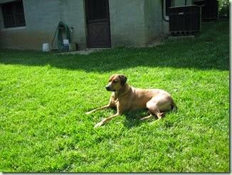 Zoe May 2006 (1)
