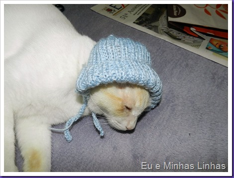 Touca para Gato4
