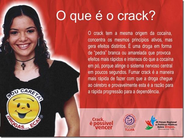 Campnha  Crack - TULIPA - Oque é o Crack
