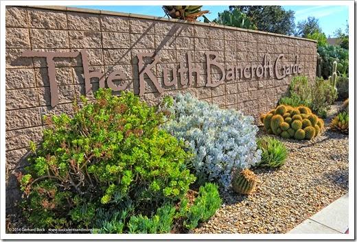 Exploring the Ruth Bancroft Garden, October 2014 edition