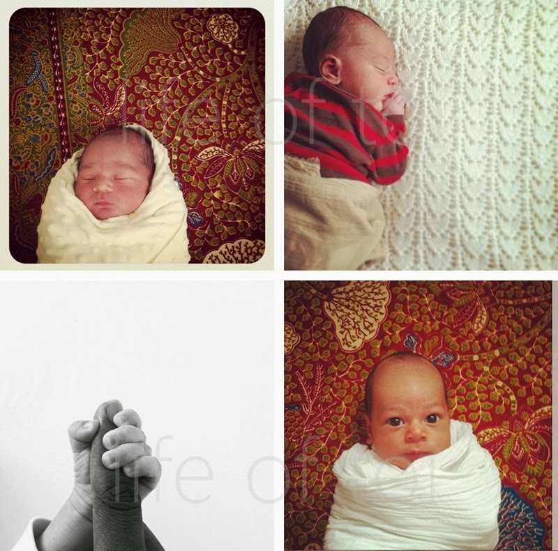 snaps of T first month copyright