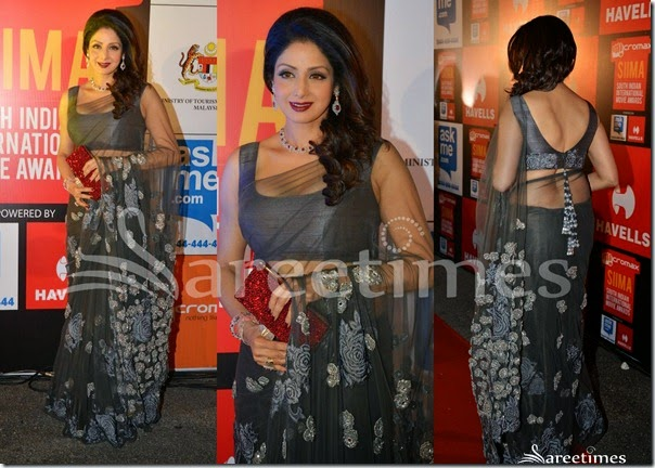 Sridevi_Grey_Net_Saree(2)