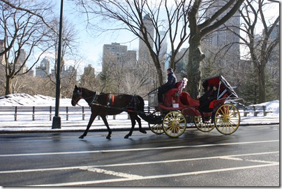 carriage-ride-central-park-nyc