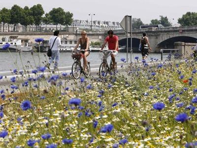 Nova passarela de pedestres em Paris, na margem esquerda do Rio Sena (Foto: Charles Platiau/Reuters)