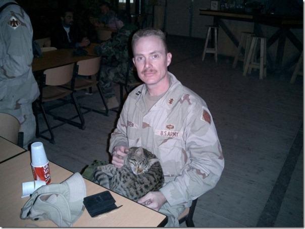 Soldados e animais de estimação (2)