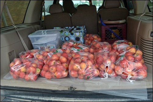 truck full of apples
