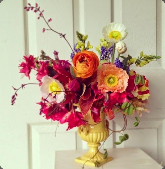 poppies 11919_10151739212767706_305139853846802725_n nature composed(sugar magnolias)
