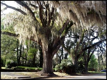 Gainesville to Hawthorn Bike Trail 099