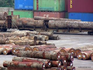 Des troncs d'arbres de Sodefor dans le Beach à Kinshasa, 2004.