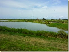 20140504_shrimp farm (Small)