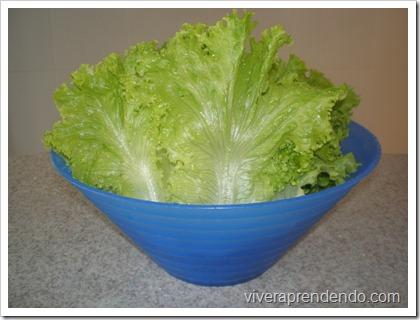 Higienizando Verduras3