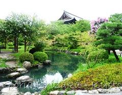 templo Toji - jardim - lago 4