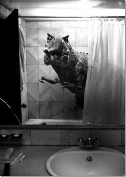 bathroom-craziness-024