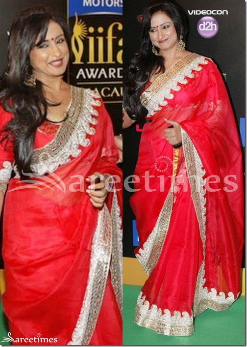 Red_Embroidery_Net_Saree