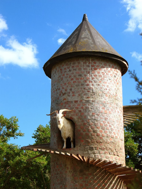 goat-tower-3