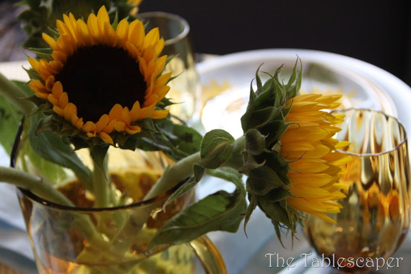 sunflowers 045