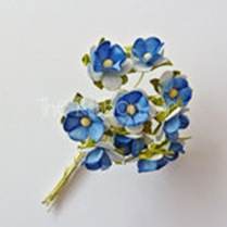 210503-BluePretBloss