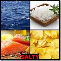 SALTY- 4 Pics 1 Word Answers 3 Letters