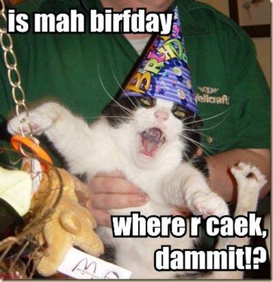 Cat-CatWearingPartyHatItsMyBirthday