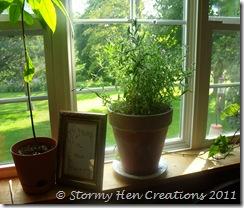 Studio (August 2011) 2011-08-22 023