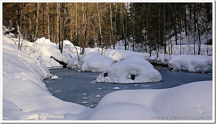 2012_01_12 Wildpark Wildbichl5