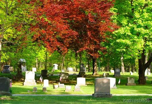 3. cemetery view-kab