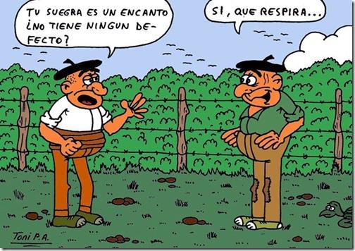 humor suegras (12)