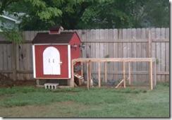 kandang ayam di kebun 004