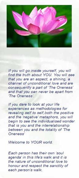 oneness excerpt