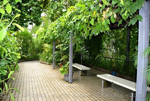 Gloria Ishizaka - Jardim Botanico de Kyoto 2012 - 14