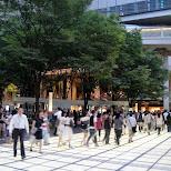 in Tokyo, Tokyo, Japan