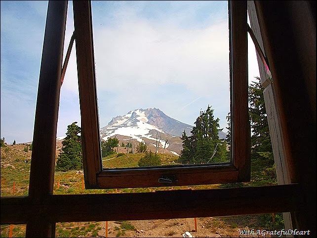 Timberline Window