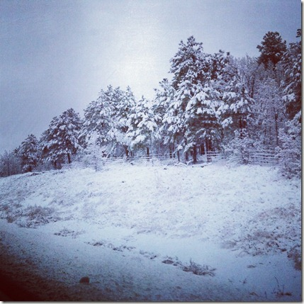 Arizona Snow