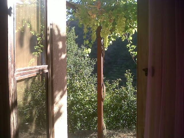 13_masardevol_finestra.jpg