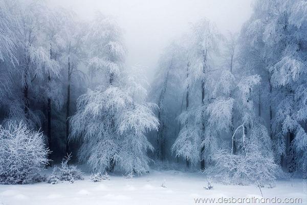 paisagens-de-inverno-winter-landscapes-desbaratinando (16)