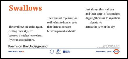 swallows poem