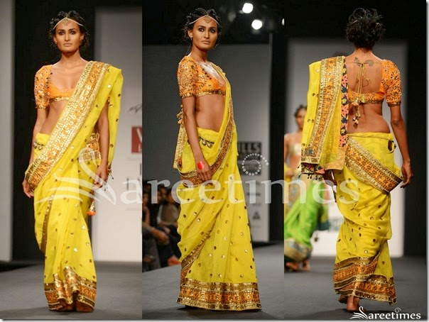 Anupama_Dayal_Yellow_Saree