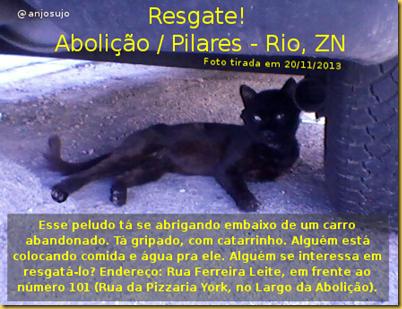 gatinho Abolição_up