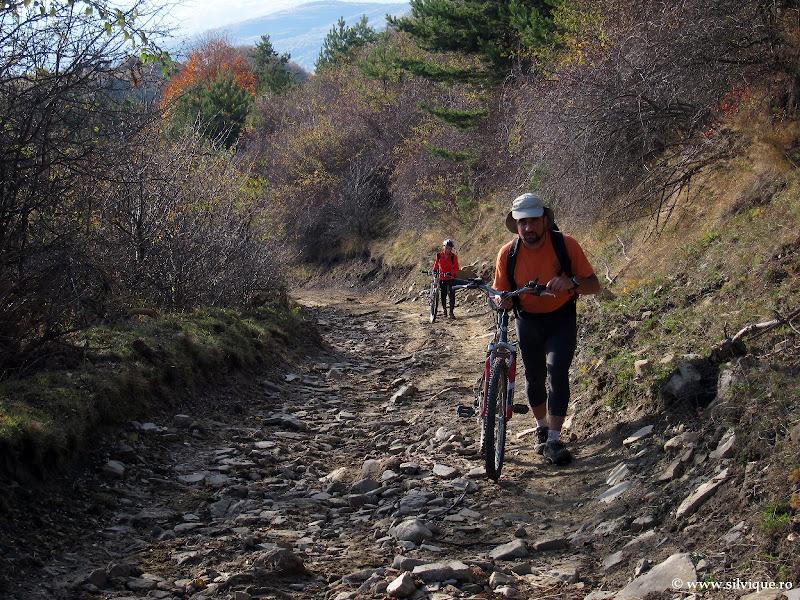 Tura de bicicleta in Mtii Grohotis