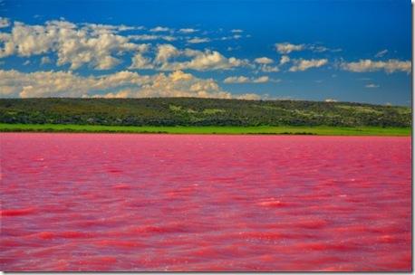 lacul roz