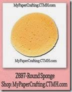 sponge-200