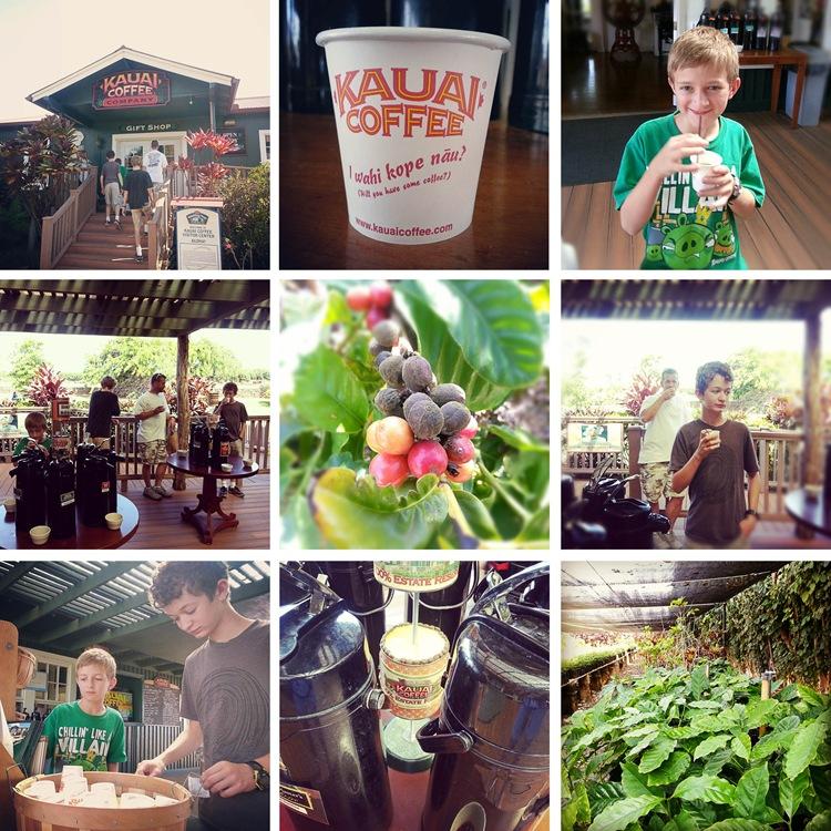 kauai day4 coffee co