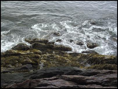 Ocean hike Camden Hills 016