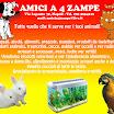 AMICI A 4 ZAMPE.jpg