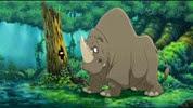 14 le rhinocéros